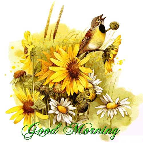 wednesday good morning everyone god bless you - Google Search