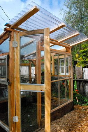 Greenhouse from corrugated plastic roofing, old windows, 2x4s. Perfect!!
