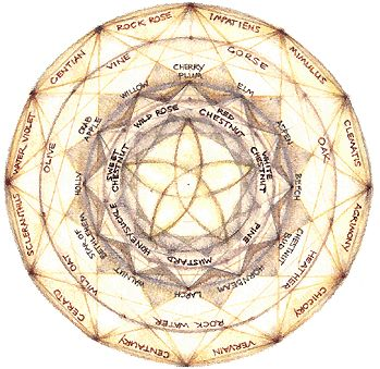Bach flower remedies conveyed in a mandala - this is a good read...
