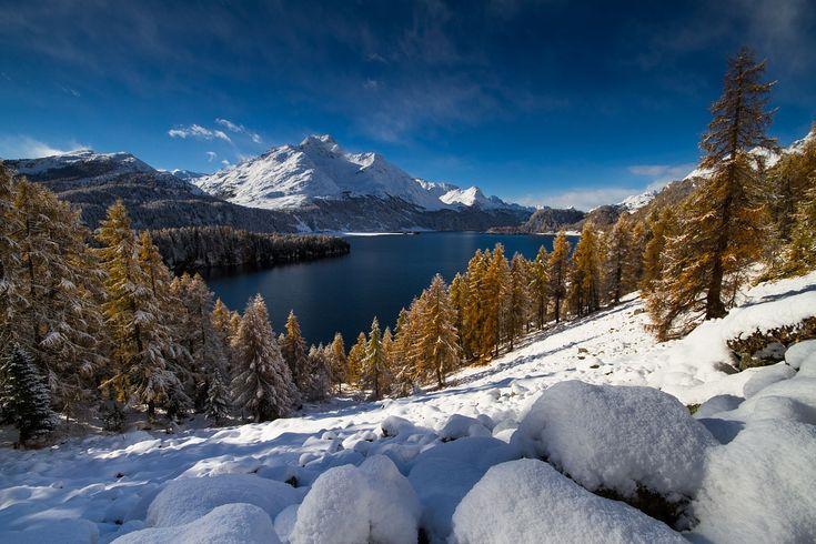 Lago Maloja Autunno
