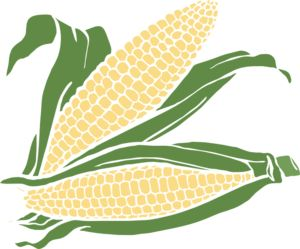 Corn clip art - vector clip art online, royalty free & public domain