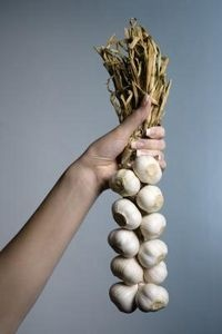 Planting Garlic in North Carolina  (time frame and tips)  Plant between mid-October and the end of November via www.ehow.com