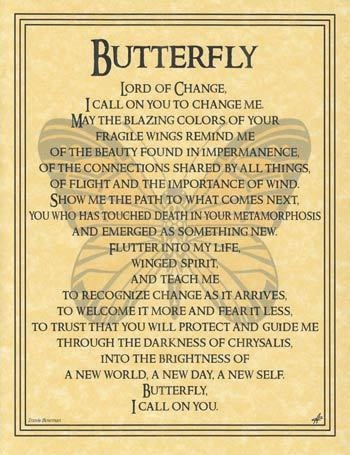 Spirit Totem Animals - Butterfly Prayer