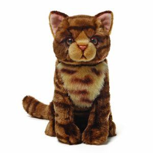 Amazon Com Gund Purrington The Brown Cat Plush Toys Games Soft
