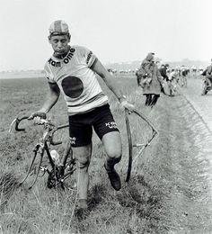Paris Roubaix Classic race eats bikes...and riders