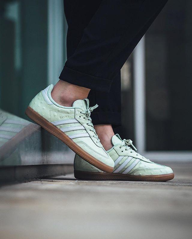 Adidas samba blanco sobre pies Jefferson Institute