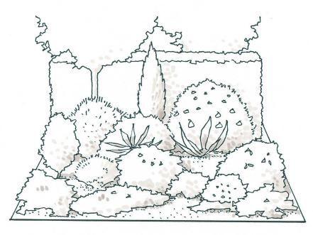22 best desktop planters images on pinterest planters, flower Houseplants For Clean Air designing a mixed planting garden houseplants for clean air