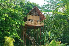 rent a Rainforest Tree House w Hot Springs.  Costa Rica