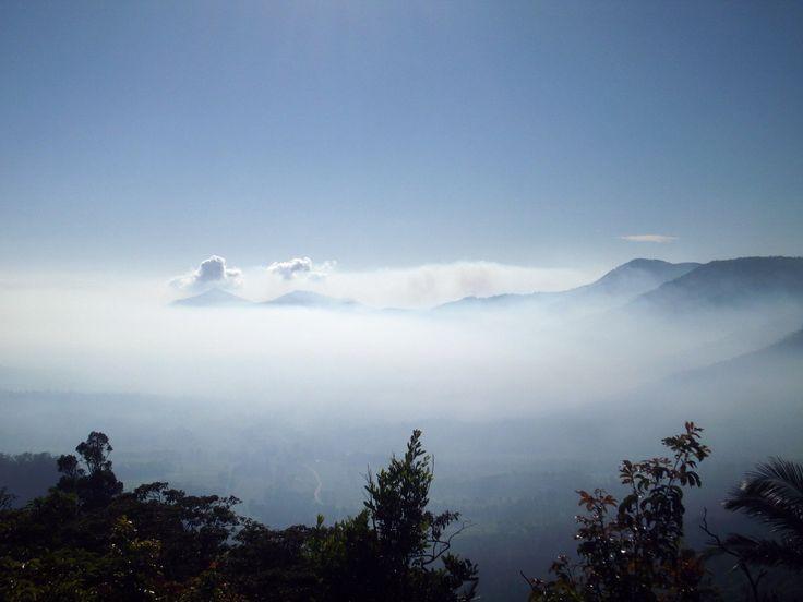 Heavy fog blanketing the Pioneer Valley this morning! #weather #fog #mackayregion
