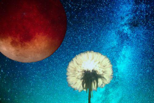 Volle maan en maansverduistering 16 september 2016 — Petra Stam