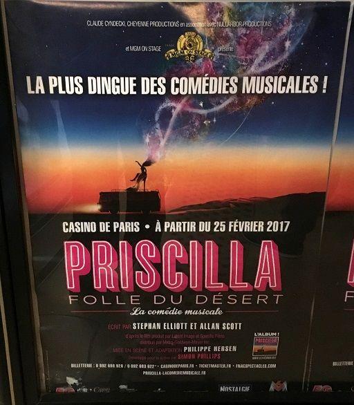 Priscilla folle du désert : http://www.menagere-trentenaire.fr/2017/07/01/priscilla-folle-du-desert