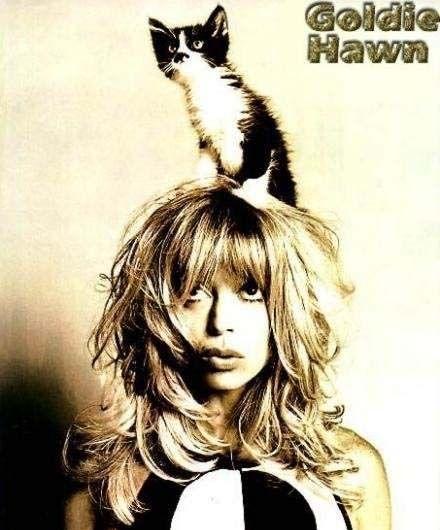 猫ちゃんとのツーショットもとにかくかわいい♡ゴールディ・ホーン♡
