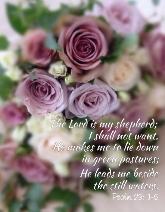 Praying for you Sister Wendy.. Psalm 23: 1-6