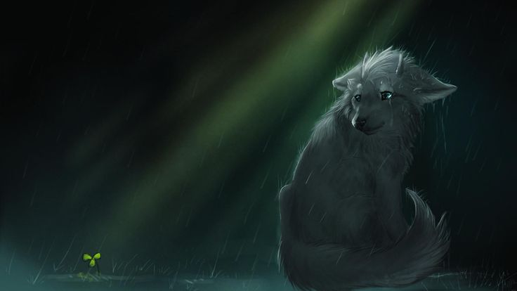 17 best ideas about anime wolf on pinterest anime