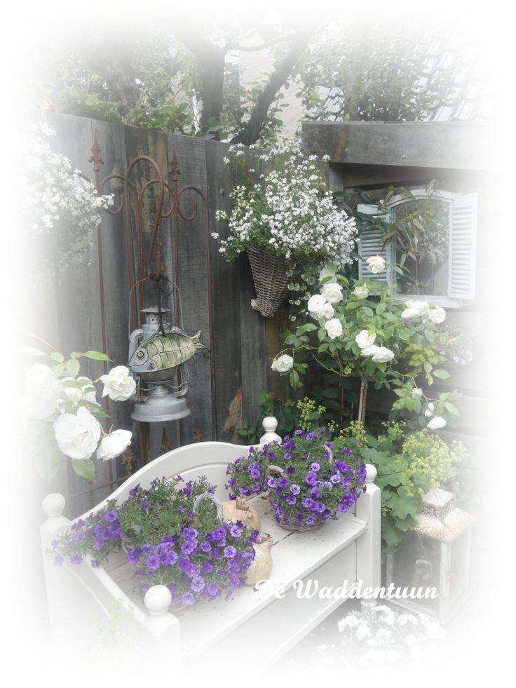 http://dewaddentuun.blogspot.nl
