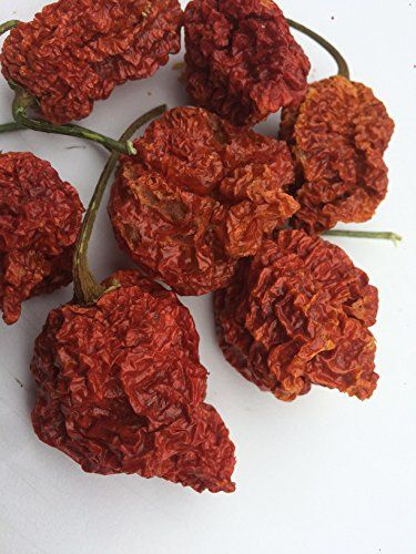 The Hot Pepper Company - Trinidad Scorpion 'butch T' Dried Pods (25g)