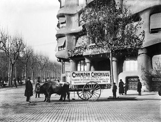 Bueyes arrastrando un carro de Champán Canónigos, delante de la Pedrera, en el Paseo de Gracia. Barcelona, años '10 '20 '30. Colección Roisi...