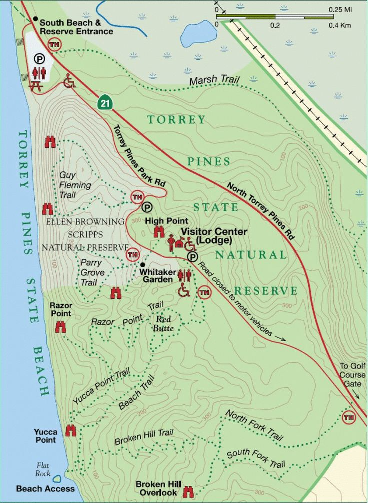 Torrey Pines State Natural Reserve - Look at this link http://www.modernhiker.com/2014/04/03/hiking-torrey-pines-state-natural-reserve/
