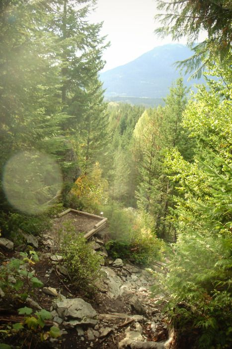 Tee box: Disc Golf course in Whistler, British Columbia