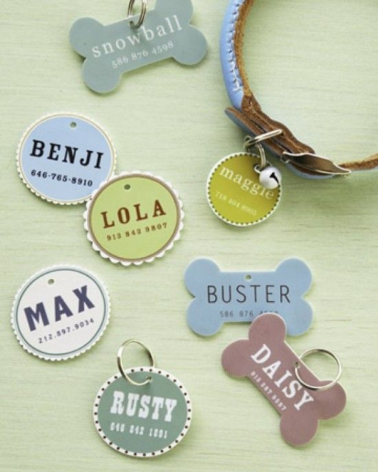 Martha Stewart Pet Tags tutorial including free printables and full instructions on how to make your own pet ID tags.
