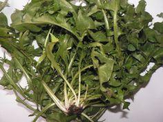 Alimentation du lapin de compagnie-légumes-Marguerite et Cie