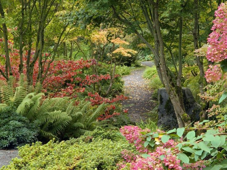 25 Best Images About Botanical Gardens On Pinterest