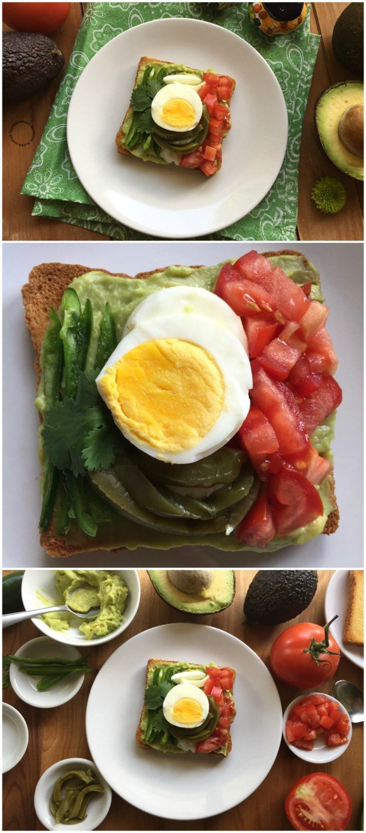 A Mexican Avocado Toast to celebrate Hispanic Heritage is the perfect bite to start the day with a yummy breakfast or to enjoy for a quick lunch or after working out