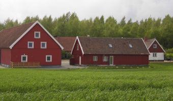 Red Bird Farm