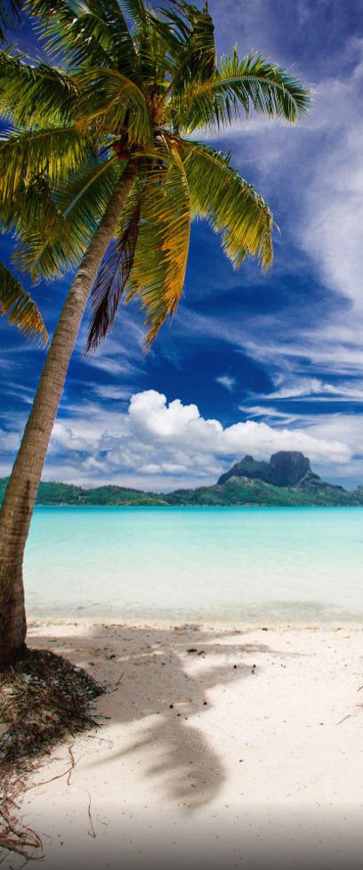 Bora Bora French Polynesia We ︎ Beach Pinterest