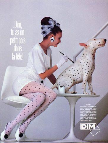Dim (Tights) 1986 Stockings Hosiery, Bull Terrier Dog