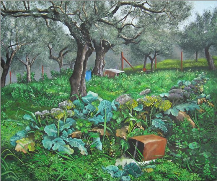 21 Best Olive Tree And Art Images On Pinterest Art Sketches Olive Tree And Olive Oil