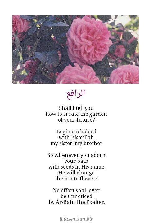 Her beautiful islamic poems make me want to join tumblr again.