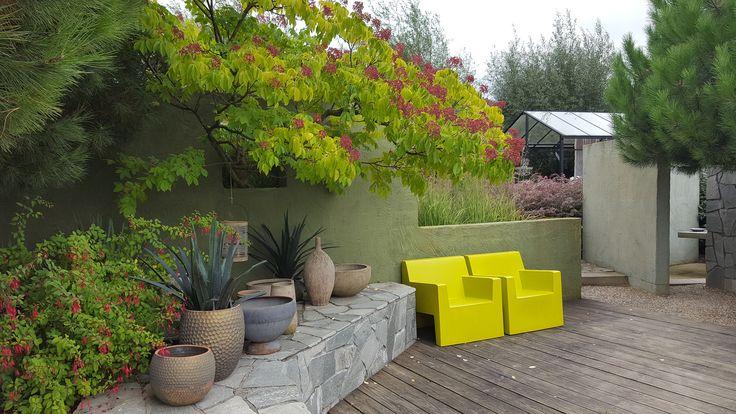 Gele stoelen, foto: Daan Buurman 04-10-16