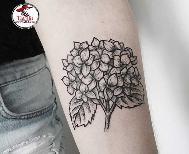 Traditional Hydrangea Tattoos In 2020 Hydrangea Tattoo Flower Tattoo Designs Flower Tattoo Arm