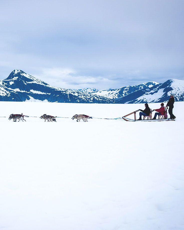 "Practice yelling ""mush"" and go for a ride in #Alaska. #DogSledding #AlaskaCruise"