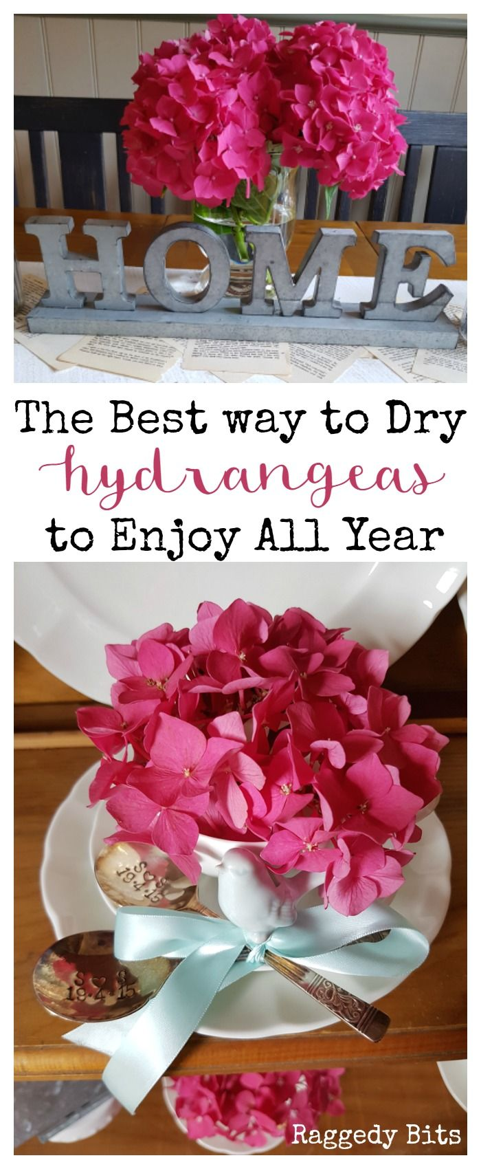 Sharing the best way to dry hydrangeas to enjoy all your round, using a little tip that my Granny shared with me | www.raggedy-bits.com