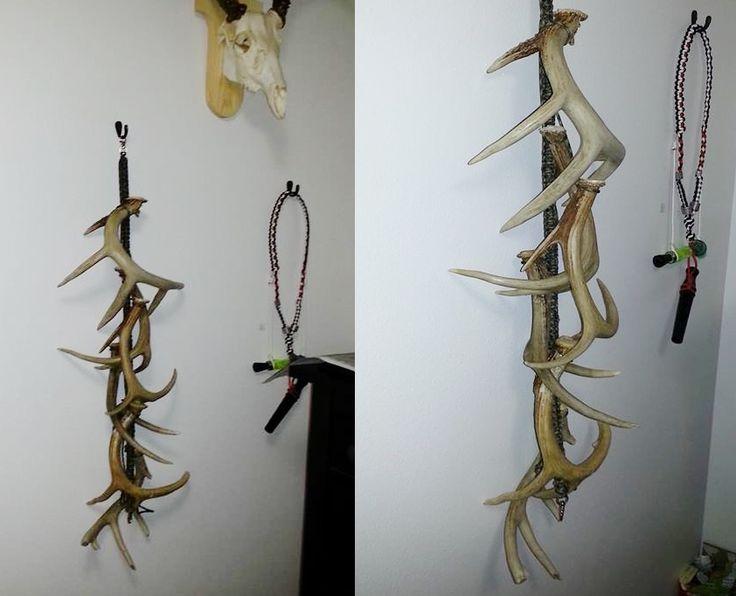 Shed Antler Display Many Ways To Hang Shed Antler