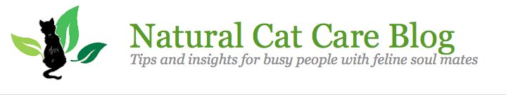 Choosing the best cat food for your awesome cat from natural cat care blog