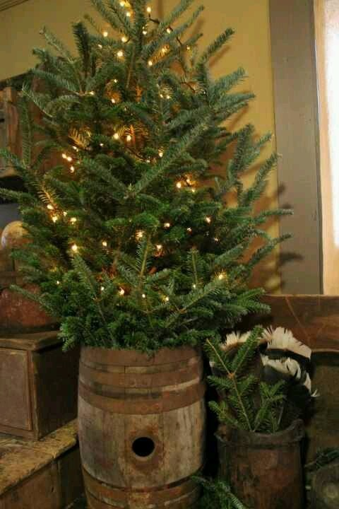 Wood barrel, pine n white lights. Nothing more country than that.
