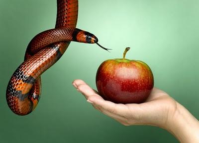 Conheça os 10 sinais que seus parceiros revelam antes da traição.    http://dahoravalealex.blogspot.com.br/2012/11/conheca-os-10-sinais-que-seus-parceiros.html