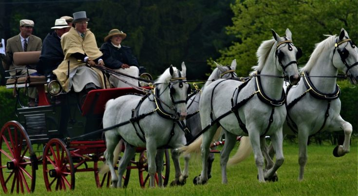 Photo Essay: Point-to-Point Steeplechase at Winterthur Museum and Gardens - Quiltripping