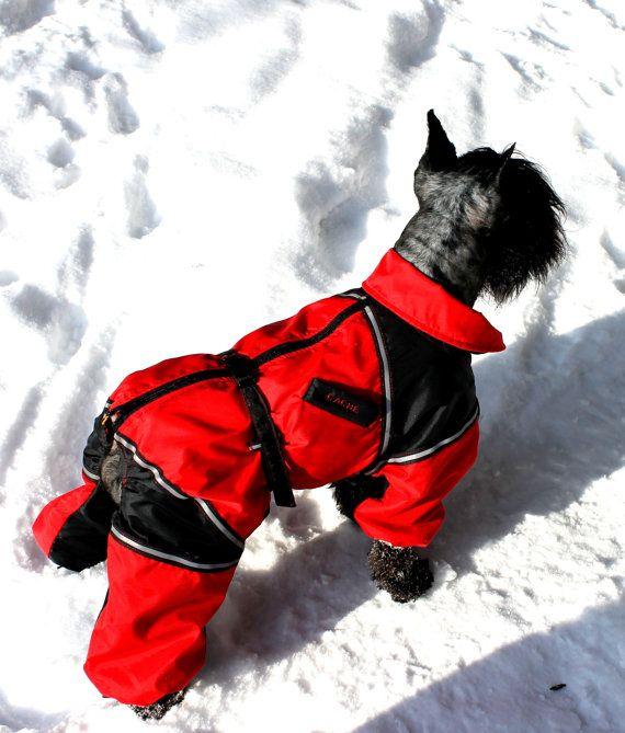 The 25+ best Dog winter coat ideas on Pinterest | Dog ...