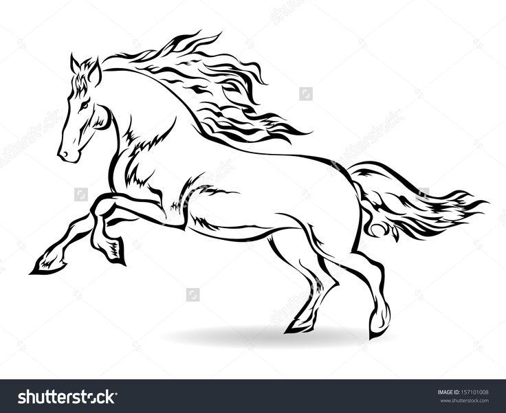 galloping horse  horses illustration image illustration