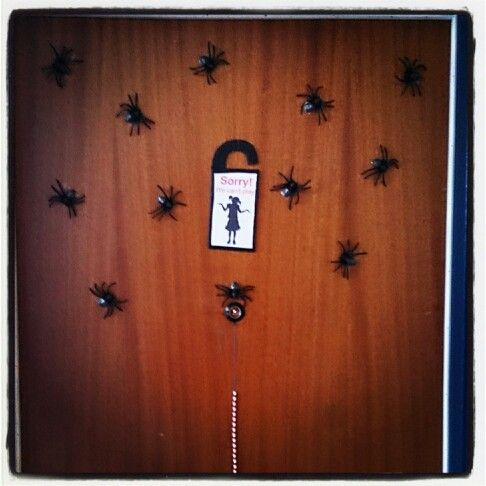 Spiders on the front door...Our front door isn't magnetic so I couldn't glue them on magnets. Instead I mounted them with tape...well some mornings we have a spider-carpet outside our door, but then we just put them up again. It's actually kind of funny...