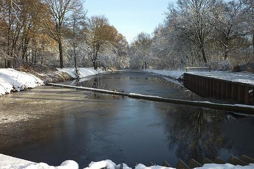 Kanaal Griendtsveen - ducks on ice