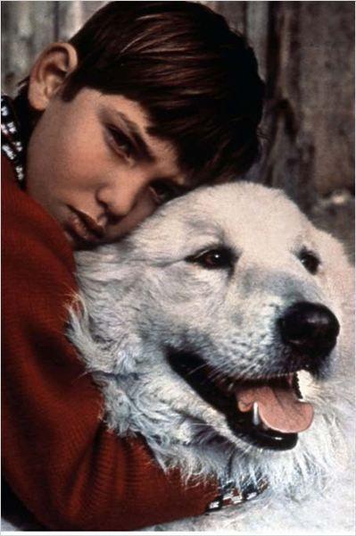 Belle et Sébastien : Photo Mehdi  Sa maman Cécile Aubry, tenait le rôle de la narratrice à chaque début.  Sébastien n'est qu'un bébé lorsque le vieux César, un montagnard, le retrouve dans un refuge : sa mère, morte en lui donnant la vie, gît à côté de lui. Il décide de l'élever comme son propre enfant, lui apprenant les secrets de la montagne... Quelques années plus tard, Sébastien recueille un chienne, qu'il appelle Belle, et tous deux deviennent les meilleurs amis du monde.