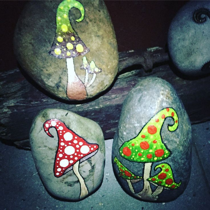 Rock shrooms