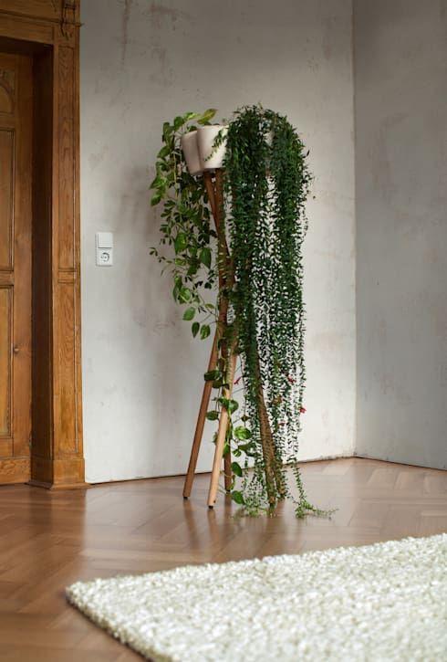 die perfekten pflanzen f rs schlafzimmer pflanzen. Black Bedroom Furniture Sets. Home Design Ideas