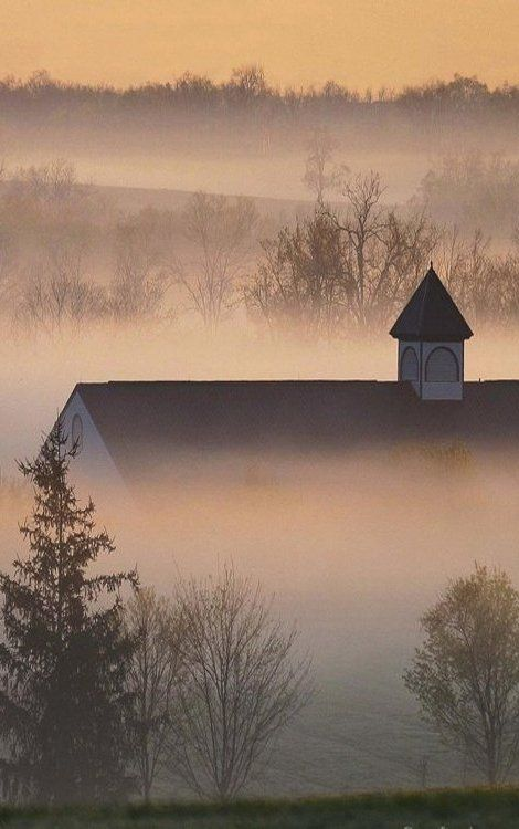 Pretty barn peaking out of the fog (from KC Martin).