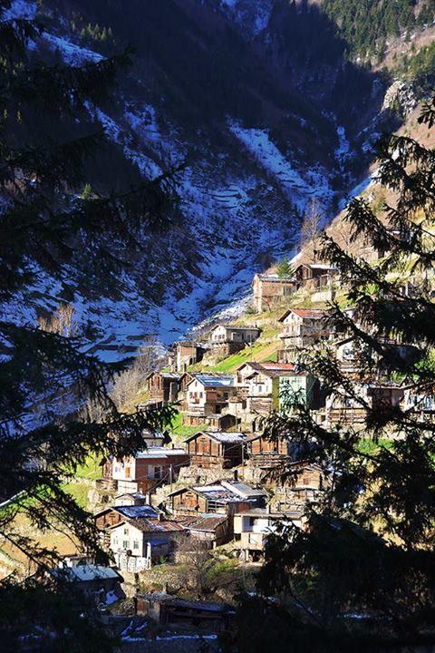 Trabzon - Koknar / Turkiye photo by Ali Kahveci
